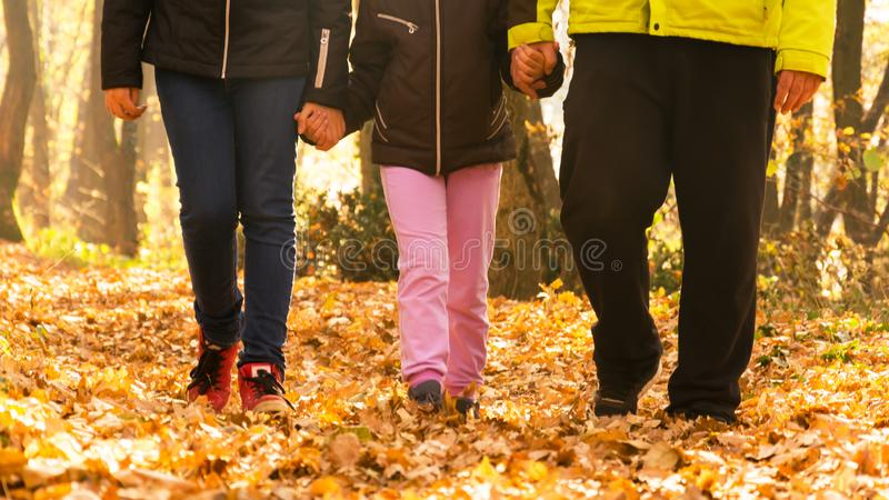 Madeiras de passeio da família Pai e filha mais idosa que guardam a filha nova pela mão imagens de stock