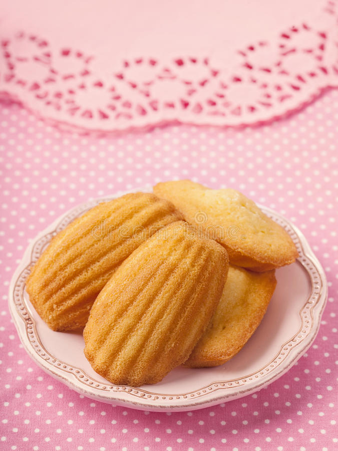 Download Madeleine stock image. Image of petite, delicious, flavor - 27901497