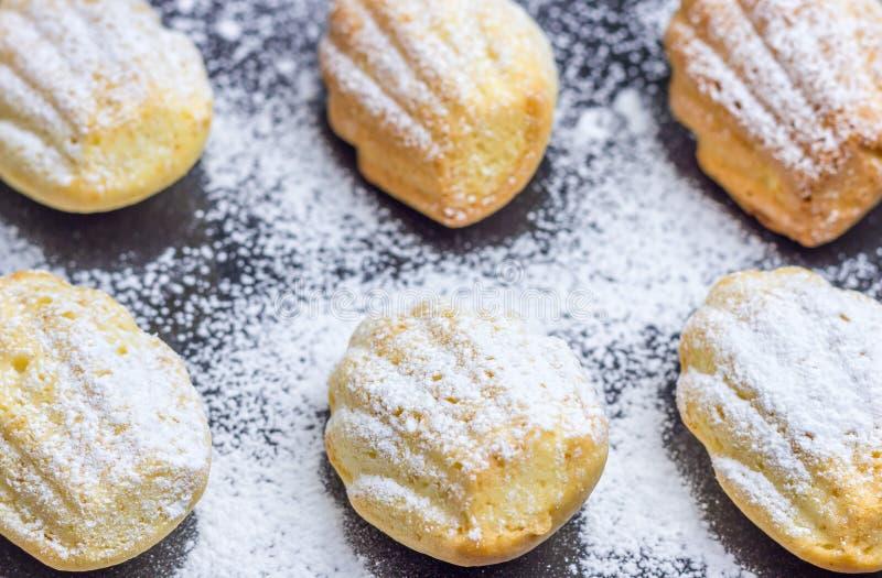 Madeleines en poudre par sucre sur le plateau de cuisson photos stock