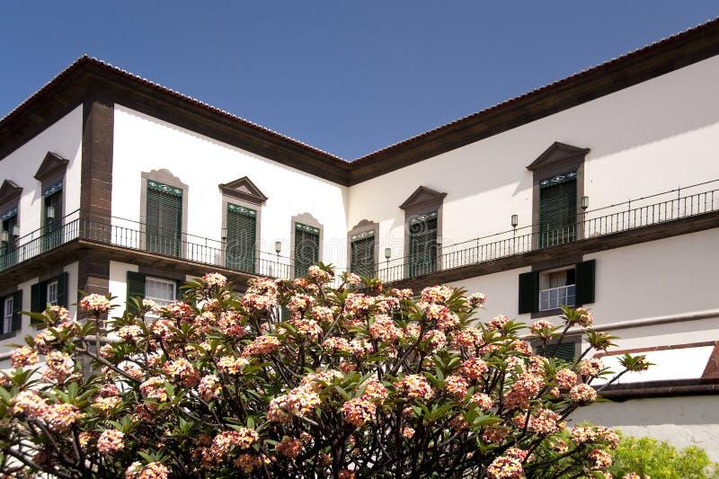 Madera zdjęcie royalty free