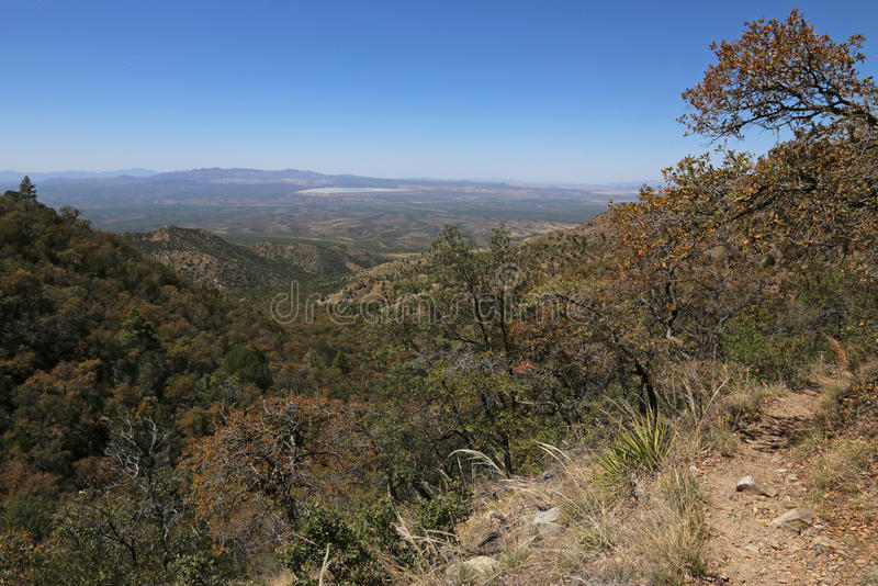 Madera Canyon View. The view from high up in Madera Canyon, in the Santa Rita Mountains, located in Arizona, United States royalty free stock image