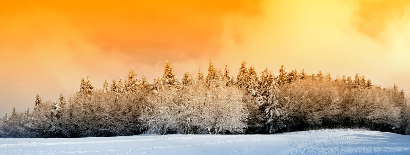 Madera con nieve imagen de archivo libre de regalías