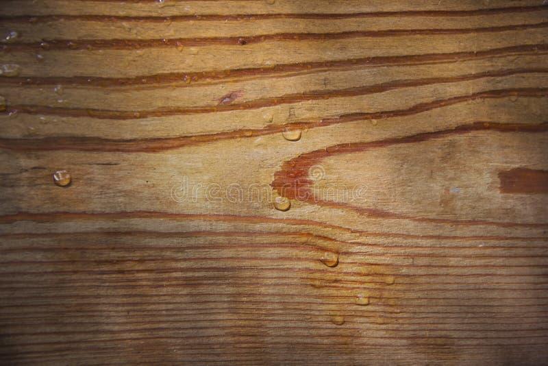 Madera, corte, dibujo de madera de la textura, natural, gotas de agua, fondo fotos de archivo libres de regalías