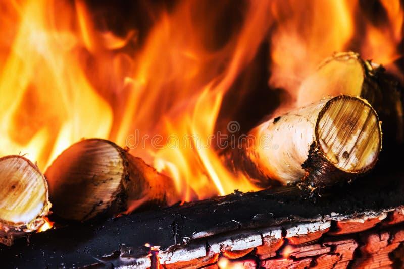 Madera de abedul que quema en la chimenea o la hoguera imágenes de archivo libres de regalías
