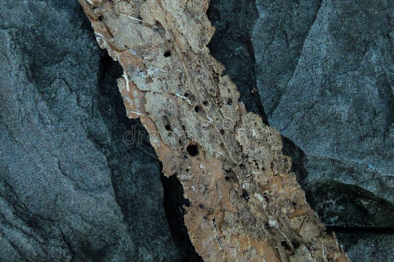 Madera de construcción en la pared de piedra fotografía de archivo