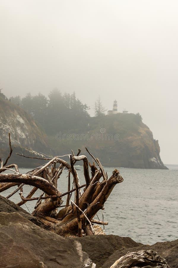 madera de deriva cerca del Océano Pacífico con el faro en fondo foto de archivo libre de regalías