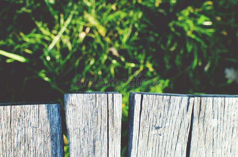 Madera e hierba foto de archivo libre de regalías