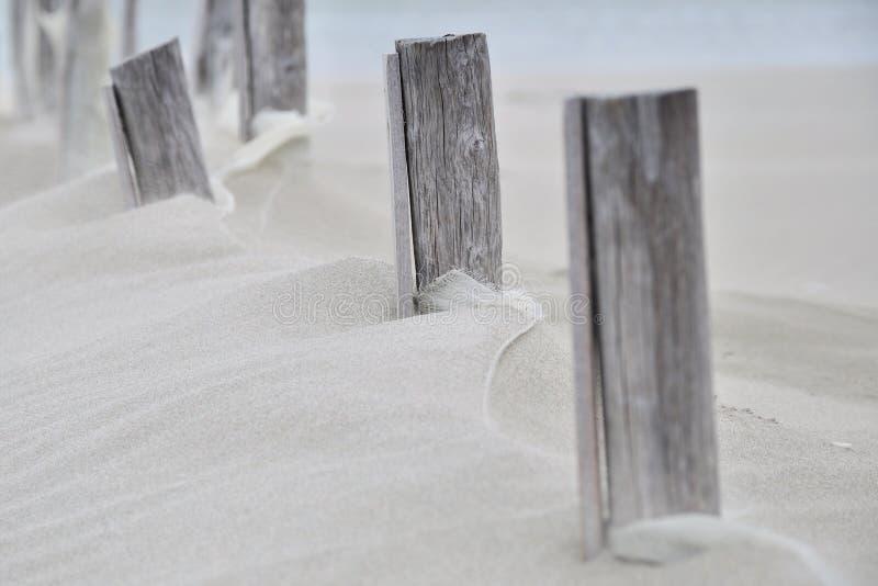 Madera en la arena imagenes de archivo