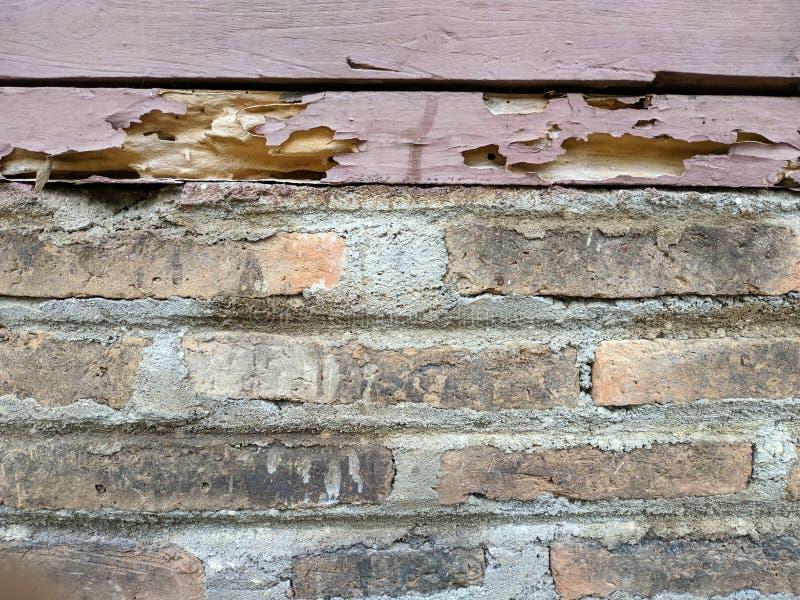 Madera putrefacta en la pared de ladrillo imagenes de archivo
