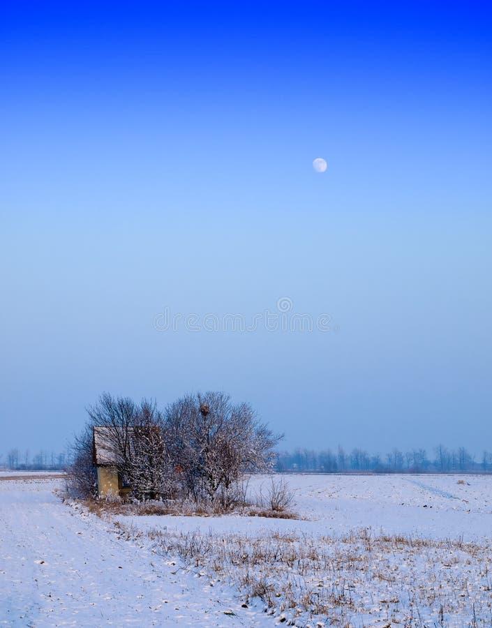 Madera y un invierno de la luna fotos de archivo