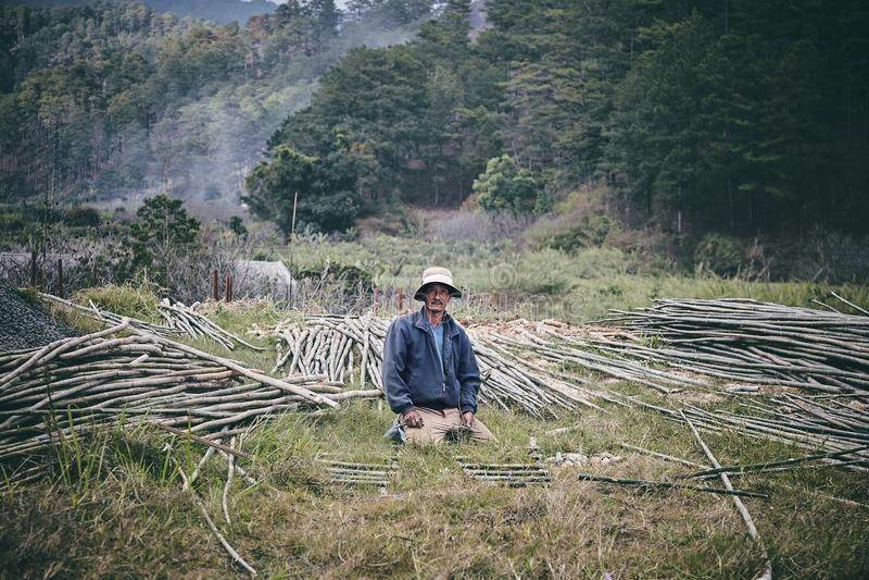 Maderero vietnamita foto de archivo
