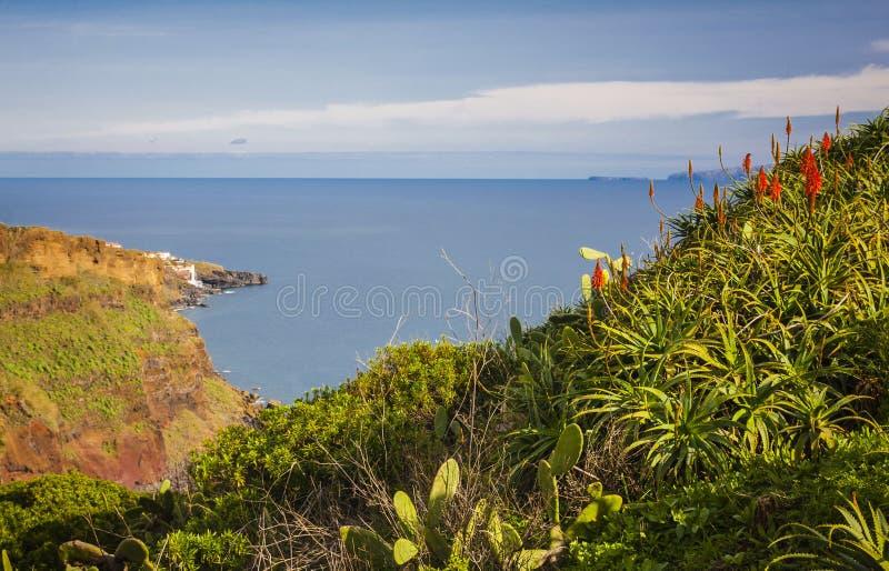 Madery wyspa, Portugalia fotografia royalty free