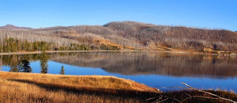 Madison arm lake in Montana stock photo