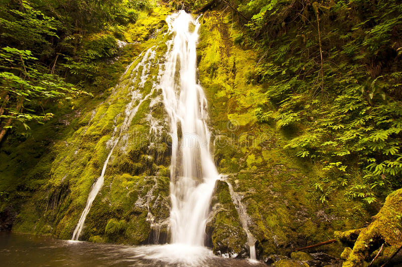 Download Madison Falls In Olympic National Park Stock Image - Image: 27155799