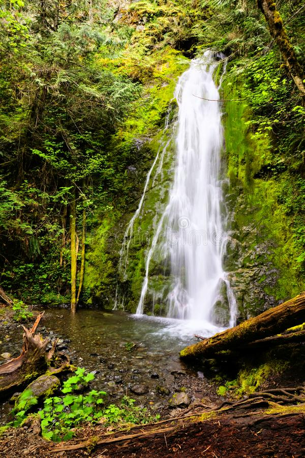 Madison Falls, Olympisch Nationaal Park, Washington, de V.S. stock fotografie