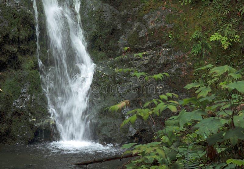 Madison Falls perto estado do rio de Ewha, Washington fotos de stock