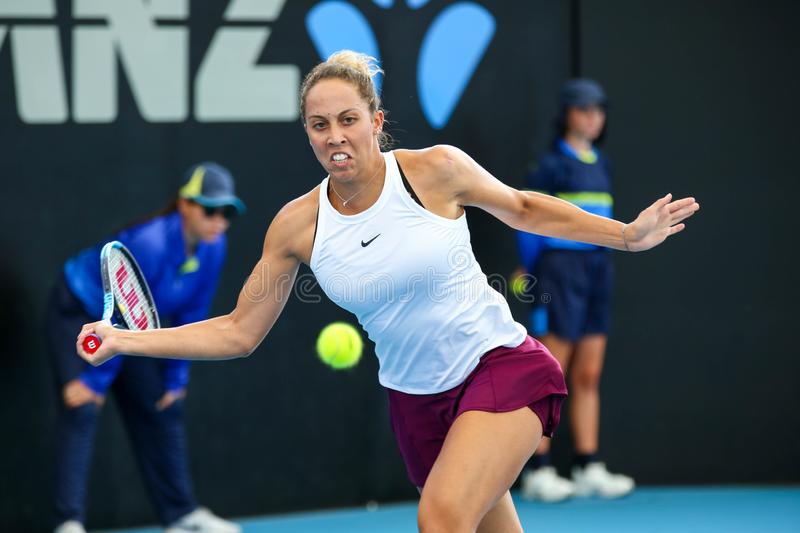 WTA Brisbane International 2020 stock photo