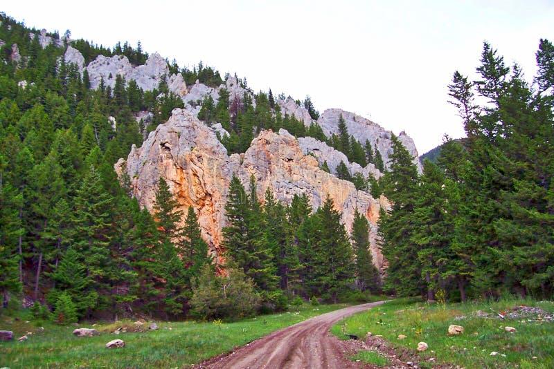 Madison Limestone, crotalo Gulch, Montana fotografia stock