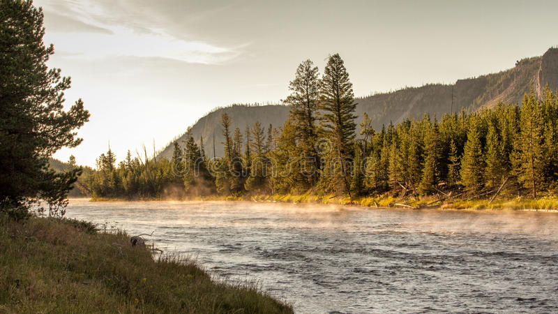 Madison River imagem de stock royalty free