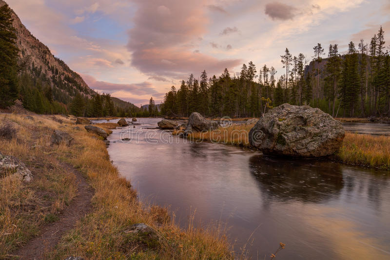 Madison River en Yellowstone fotos de archivo