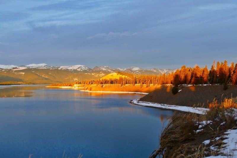 Madison River, Hebgen-Meer, Montana stock foto