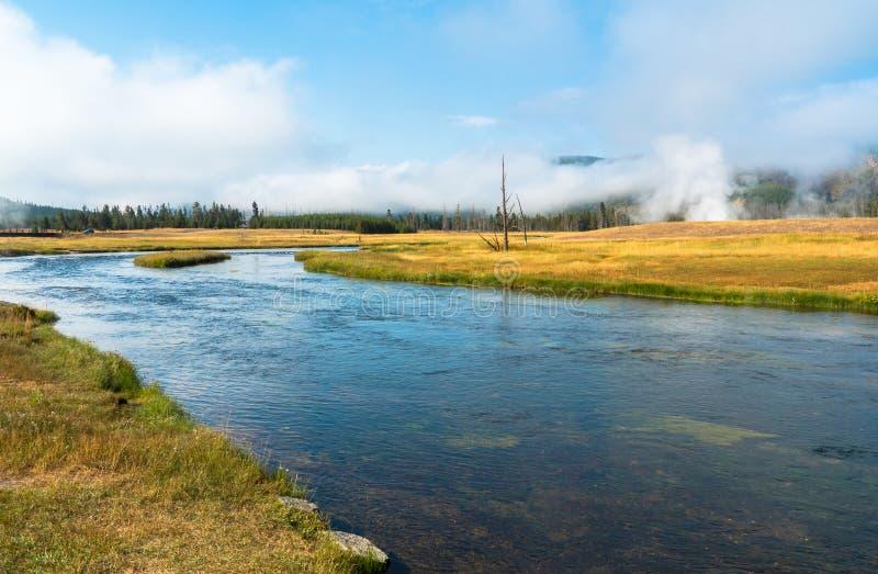 Madison River no parque nacional de Yellowstone, Wyoming, EUA imagem de stock