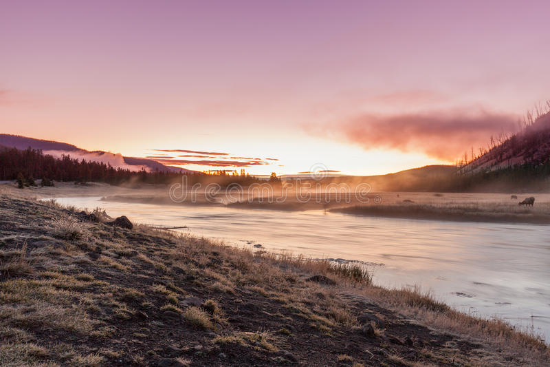Madison River Sunrise fotografia stock