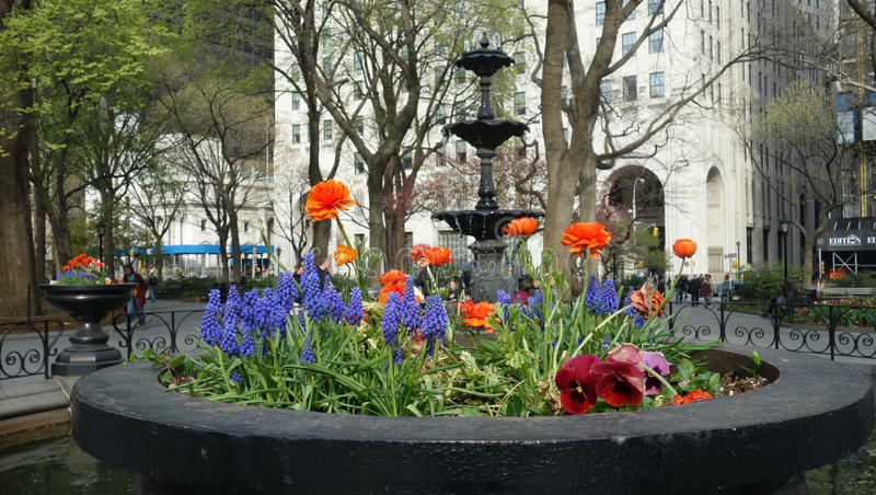 Madison Square Park in New York City stock images