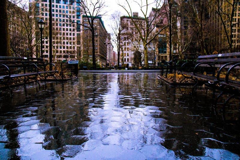 Madison Square Park na chuva imagens de stock royalty free
