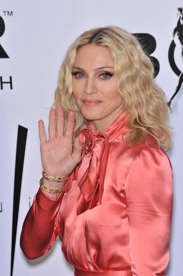 Madonna royalty-vrije stock afbeeldingen