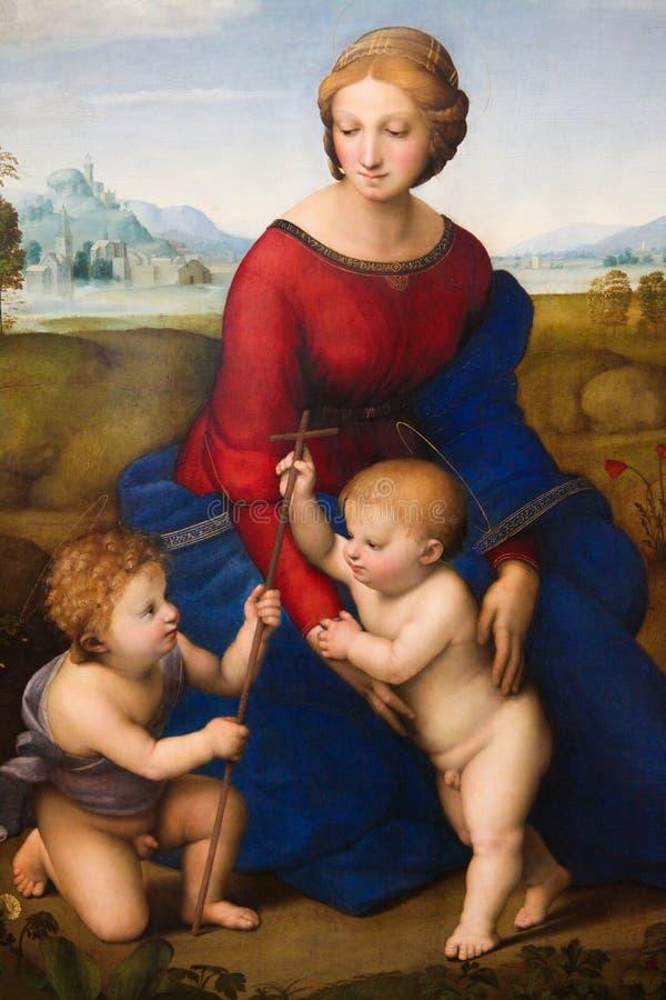 Madonna del prato da Raphael immagine stock