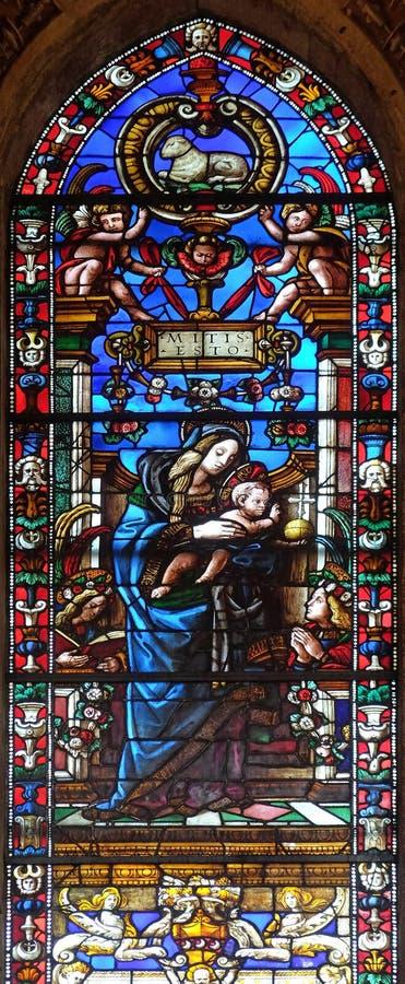 Madonna- och barnmålat glassfönster i den Santa Maria Novella kyrkan i Florence royaltyfri bild