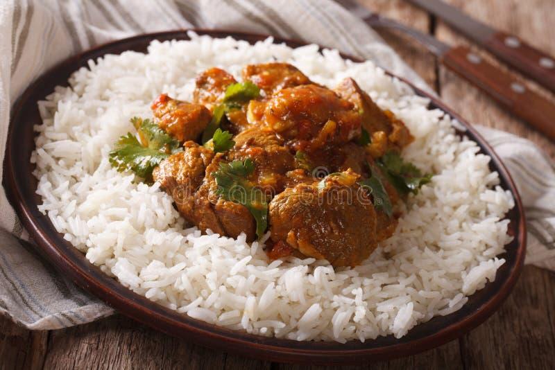 Madras nötkött med närbild för basmati ris för garnering på en platta Horiz royaltyfri fotografi