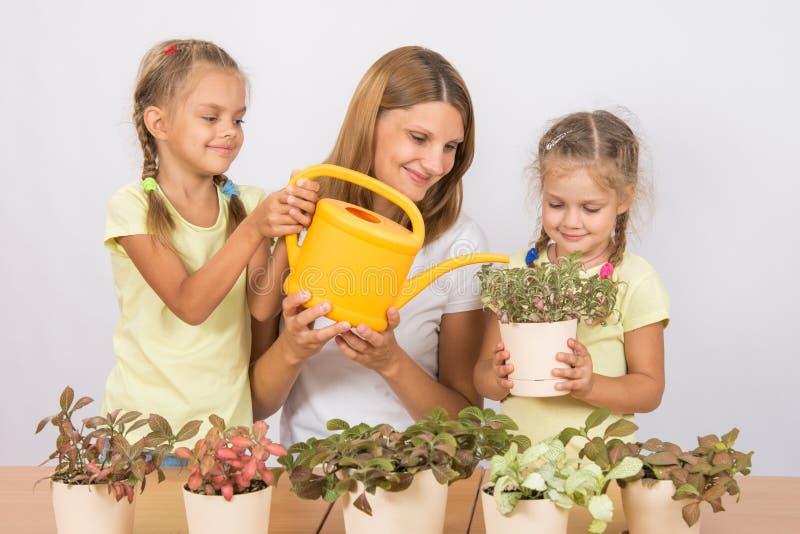 Madre alegre y niños que riegan las flores imagenes de archivo