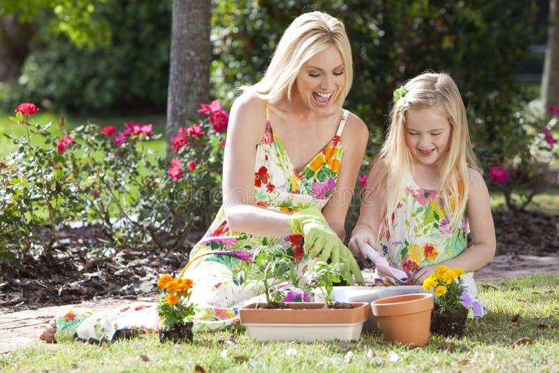 Madre & figlia che fanno il giardinaggio piantando i fiori immagine stock