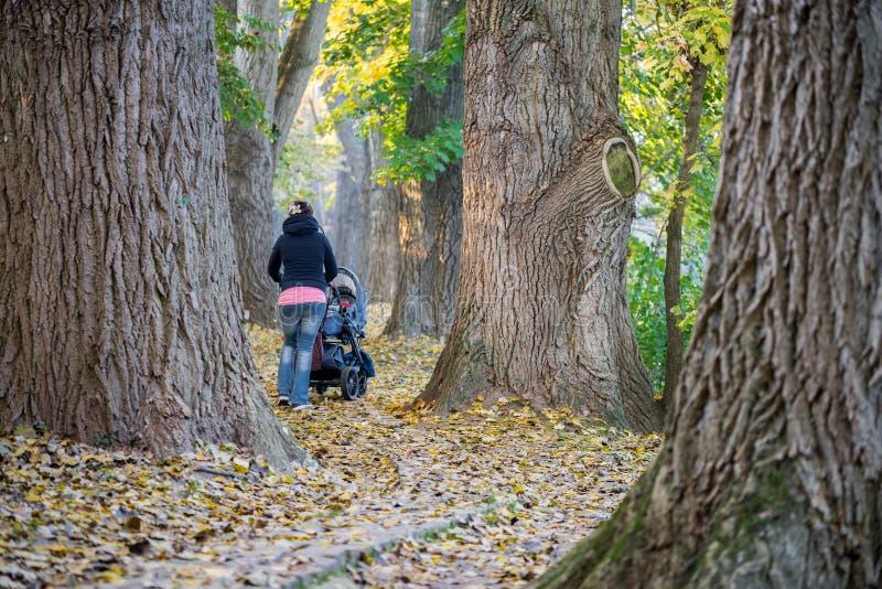 Madre con el cochecillo de bebé en un parque en el otoño imagenes de archivo