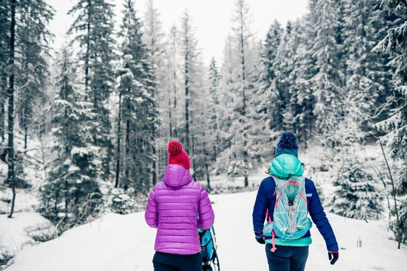 Madre con il passeggiatore di bambino che gode della maternità nella foresta di inverno fotografia stock