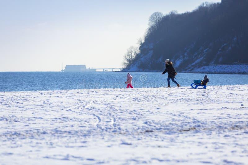 Madre con los gemelos que caminan en la playa nevosa imagen de archivo libre de regalías