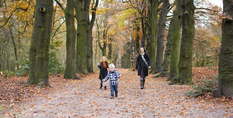 Madre con los niños en bosque imagenes de archivo