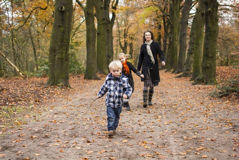 Madre con los niños en bosque imagen de archivo