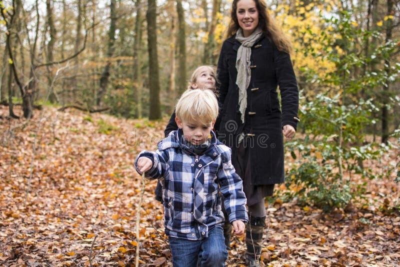 Madre con los niños en bosque fotografía de archivo