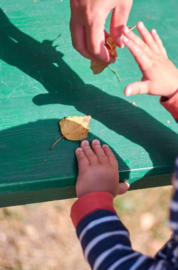 Madre con un piccolo bambino che gioca con le foglie autunnali fotografie stock