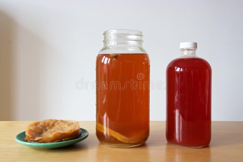 Madre de Kombucha o SCOBY y té preparado del kombucha imagen de archivo