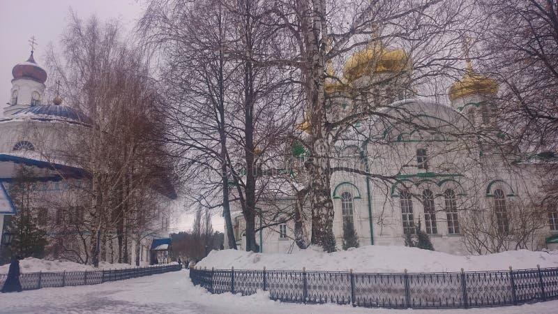Madre de Raifsky del monasterio de dios en invierno fotografía de archivo