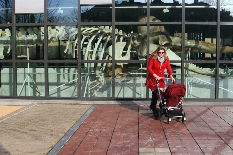 Madre e bambino al museo di Museon con lo scheletro di un cachalot, L'aia, Paesi Bassi fotografia stock libera da diritti