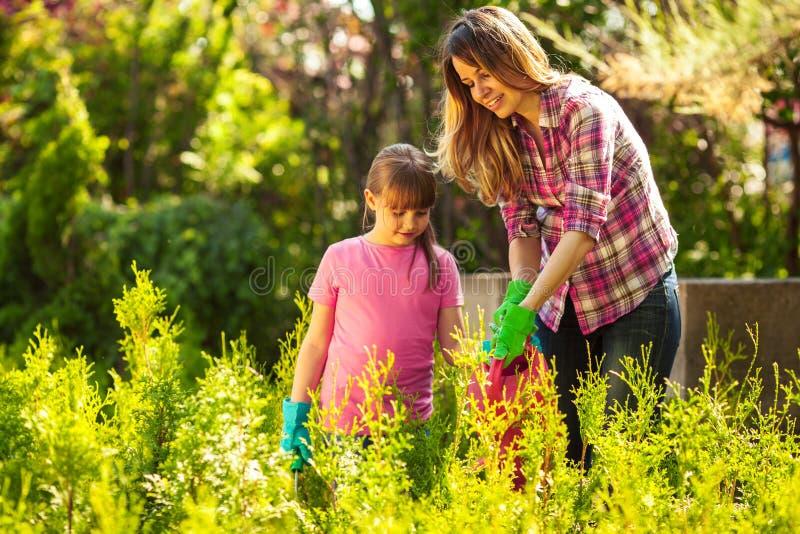 Madre e figlia che fanno il giardinaggio insieme fotografia stock
