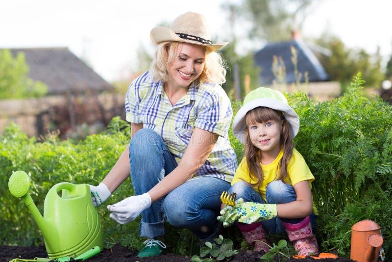 Madre e figlia impegnate nel giardinaggio insieme immagini stock