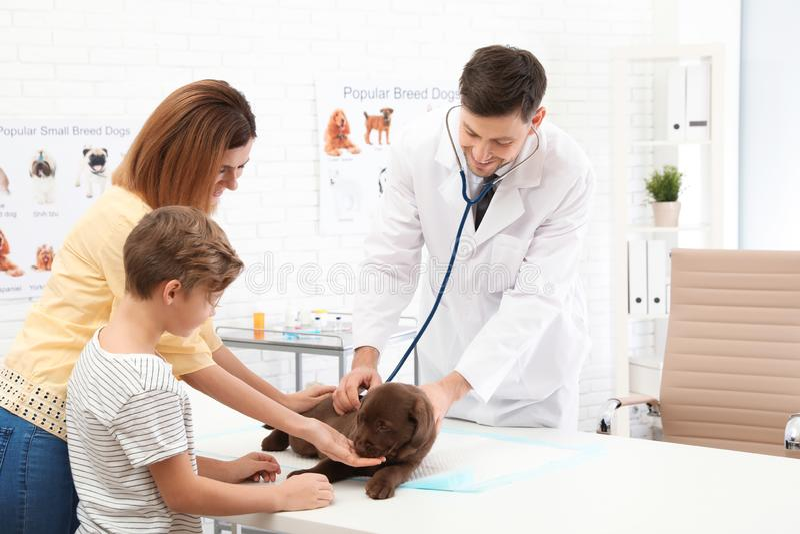 Madre e figlio con il loro veterinario di visita dell'animale domestico in clinica immagine stock libera da diritti