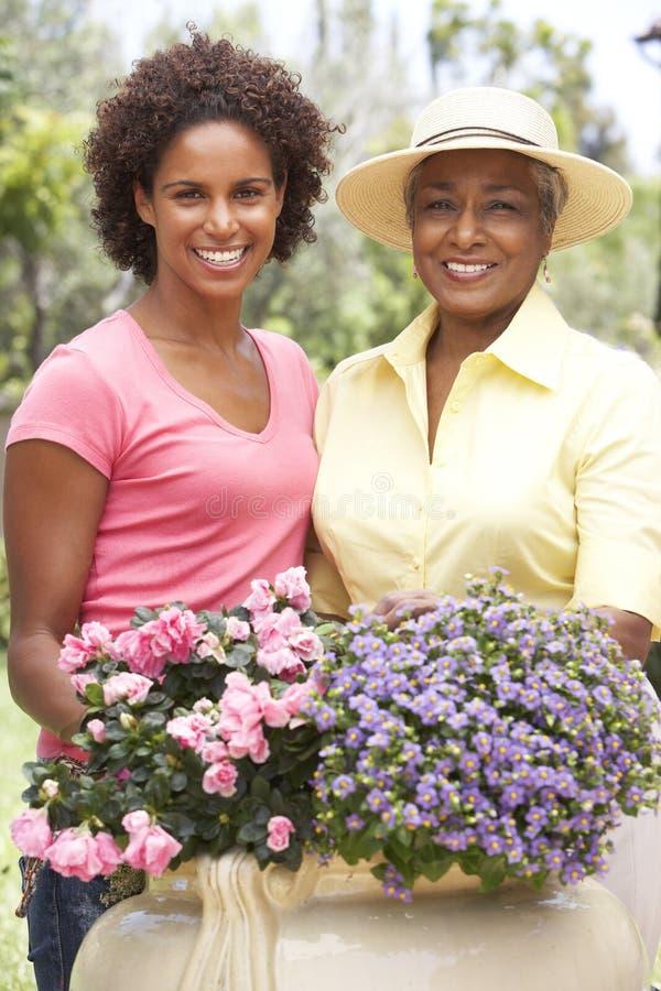 Madre e hija que cultivan un huerto junto foto de archivo