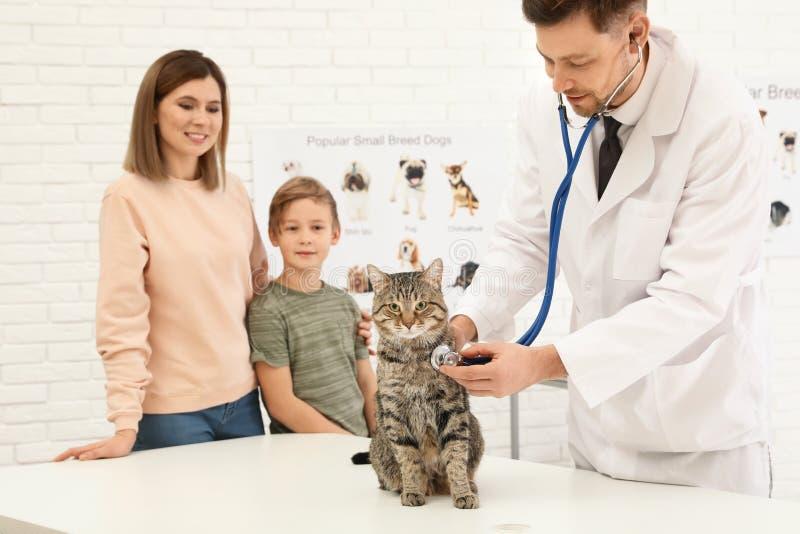 Madre e hijo con su veterinario que visita del animal doméstico Gato de examen del doc. imagen de archivo